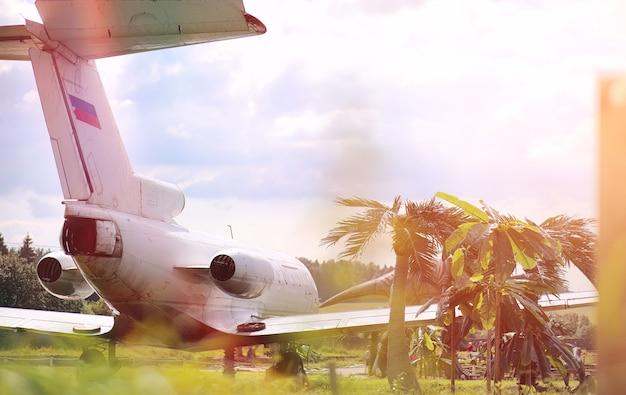 ジャングルの飛行機。飛行機は手のひらの密集した植生に着陸しました。ジャングルの島への旅。