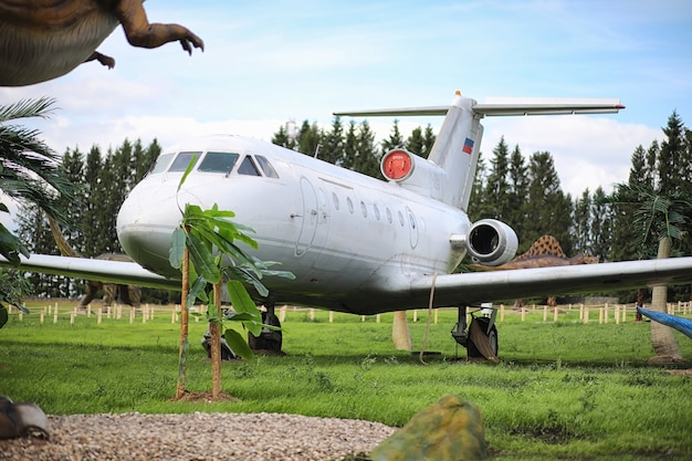Plane in the jungle. the plane landed in the dense vegetation of the palms. journey to island in the jungle.