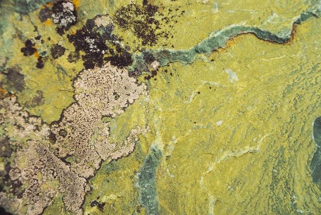 Плоскость пестротканого валуна в макросе. красивый конец поверхности утеса вверх. красочный текстурированный камень. изумительная детальная предпосылка валуна гористых местностей с мхами и лишайниками. естественная текстура горы.