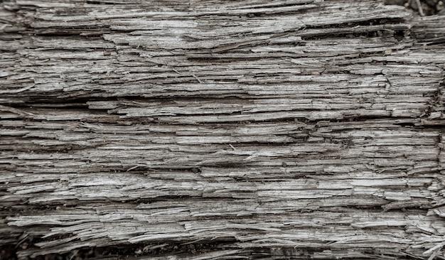 黒と白の木の質感