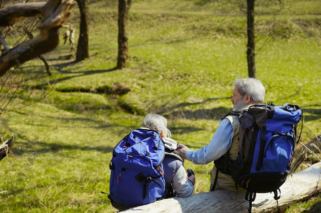 将来の計画。晴れた日に木々や小川の近くの緑の芝生を歩いて観光服を着た男女の老家族カップル。観光、健康的なライフスタイル、リラクゼーションと一体感の概念。