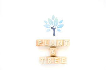 Plant a Tree words and paper tree