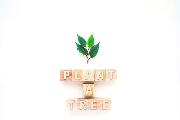 나무 단어와 작은 가지 심기