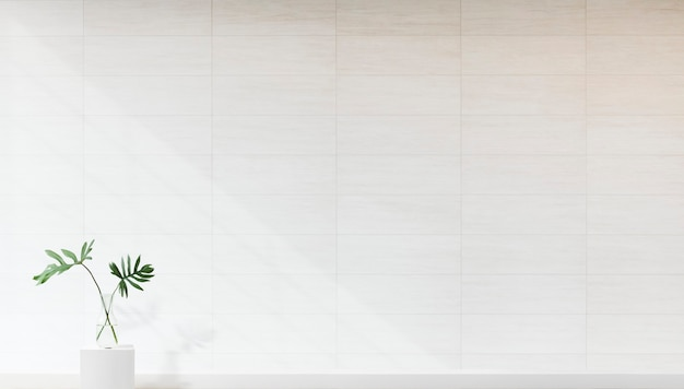 흰 벽 모형에 대한 식물