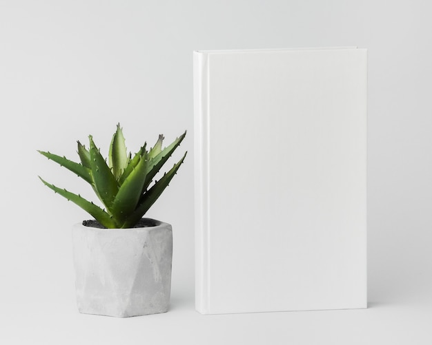 Plant beside book
