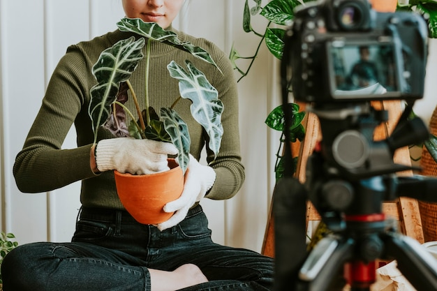 自分が植えているビデオを撮影している植物ブロガー