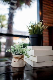Plant on book pile