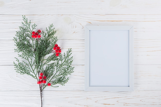 Plant branch with berries near blank frame
