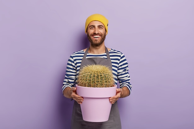 Plant care concept. happy male gardener holds pot with cactus, dressed in striped jumper and apron, being in good mood
