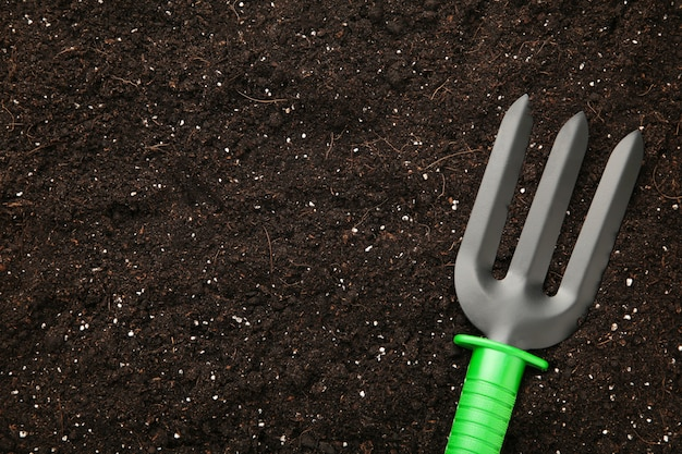 Plant care utensils on soil with copy space Premium Photo