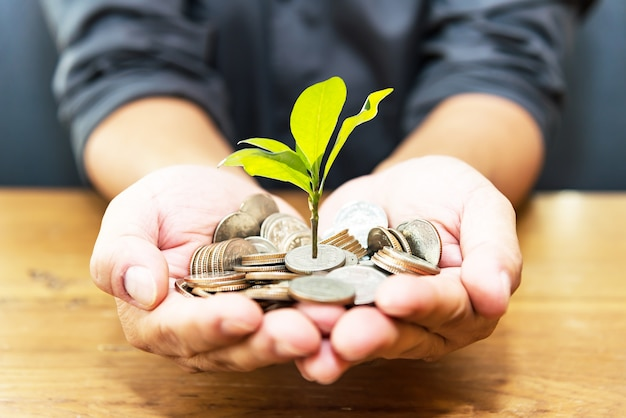 Plant a coin and plant a green tree on an old wood background. investment concept