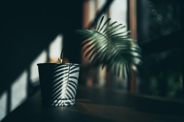 最小限のスタイルの背景の植物装飾デザイン、天然木のテーブルスペースの飲み物、ホームカフェの部屋のモダンな緑の壁のインテリア、温かい飲み物と朝の太陽の光