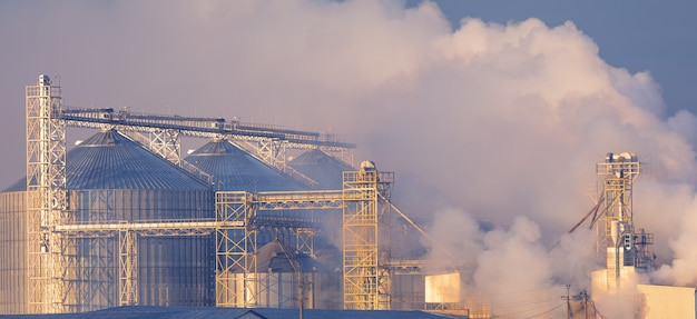 Plant or elevator, harmful emissions into the atmosphere.