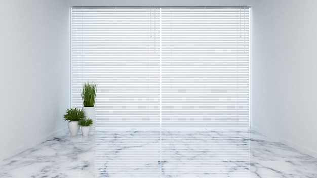 Plant in empty room - 3d rendering