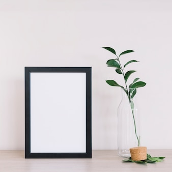 Plant and a frame