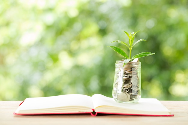 Plant growing from coins in the glass jar on blurred nature