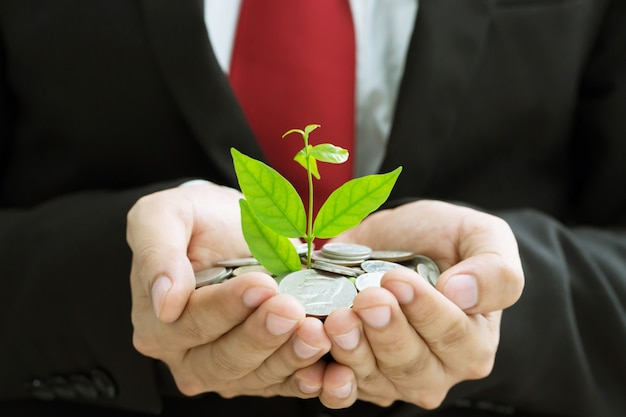 Plant growing from money coins in hands