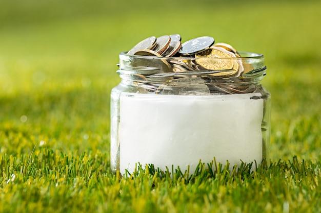 푸른 잔디에 돈을 위해 동전 유리 항아리에 성장하는 식물