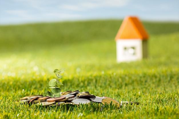 Растение в стеклянной банке монет для денег на зеленой траве