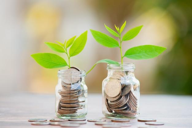貯蓄コインで成長する植物-投資と利息の概念