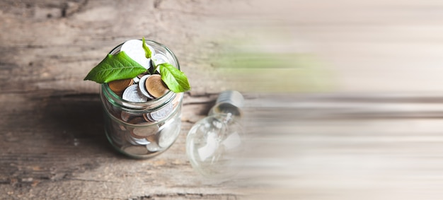 Plant growing in jar with coins on wooden table and light bulb - investment growth concept