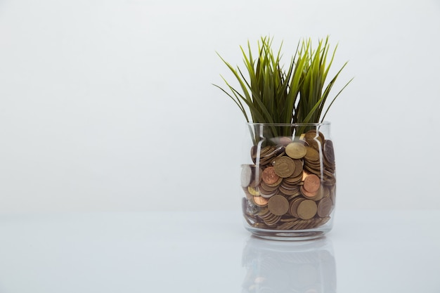 Plant growing out of coins in bank. growing deposit concept
