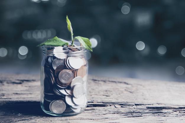 木製のテーブルの上のコインの瓶から成長する植物-投資成長の概念