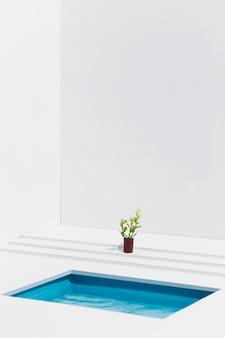 プールの横にある鍋に植える