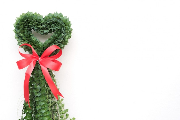 심장 모양의 식물