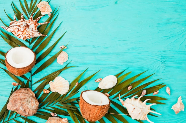 Plant leaves near coconuts and seashells on board