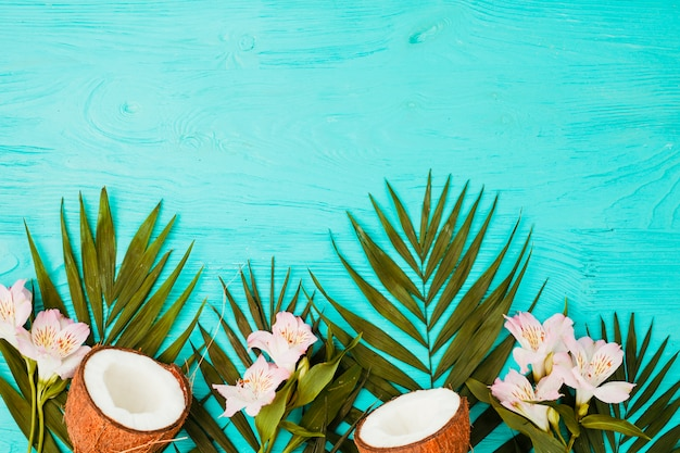 Plant leaves with fresh coconuts and blooms