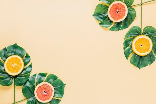 얇게 썬 감귤과 식물 잎