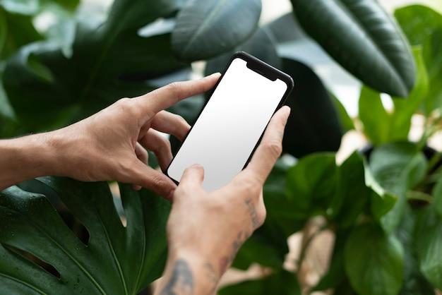 Genitore della pianta che utilizza smartphone con schermo vuoto