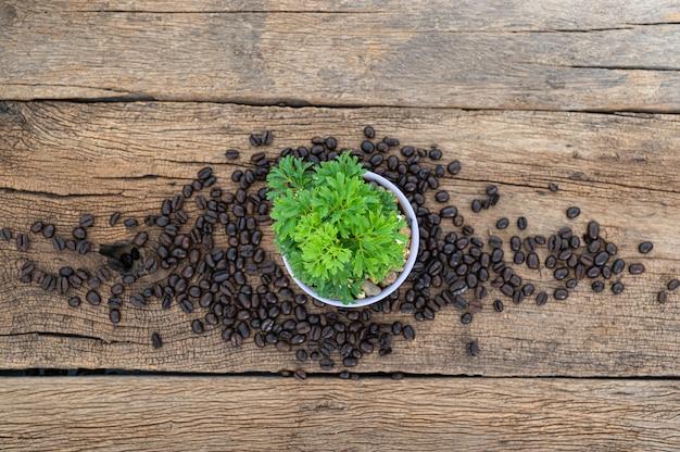 木製のテーブルトップビューに植木鉢とコーヒー豆