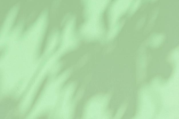 녹색 배경에 식물 그림자 프리미엄 사진