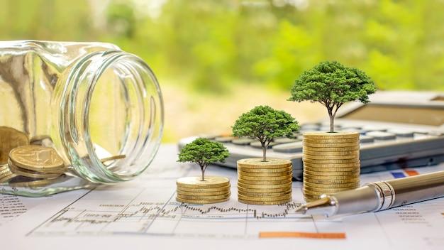 동전과 계산기, 재무 회계 개념에 나무를 심고 돈을 절약하십시오.