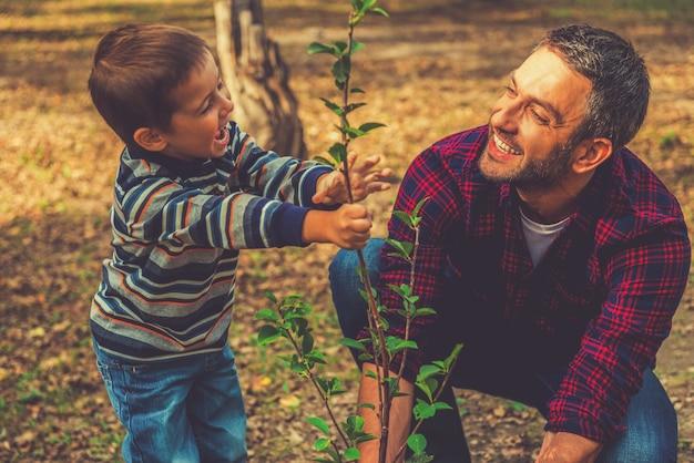 가계도 심기. 그의 어린 아들이 그를 돕는 동안 나무를 심는 행복한 청년