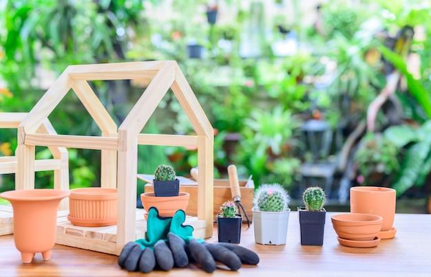 サボテンを植えて、木を育てます。植物園での家庭菜園とレクリエーション活動。