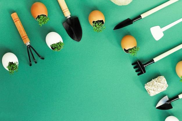 달걀 껍질에 묘목을 심고 집에서 유용한 미세 녹지 재배