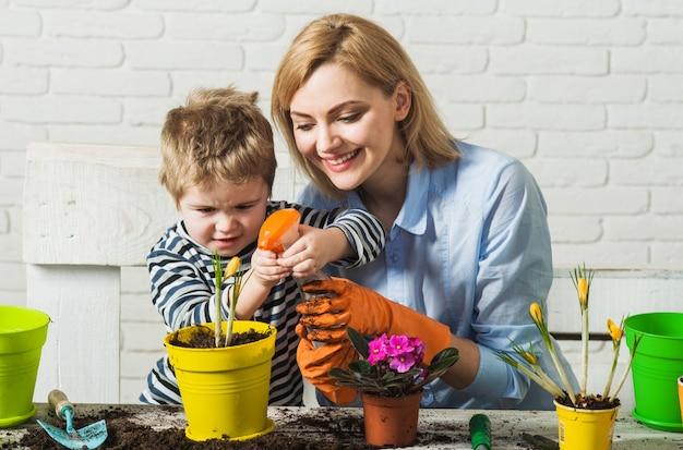 함께 심기. 어머니와 아들 꽃 심기입니다. 가족 관계. 식물을 가꾸다. 원예.