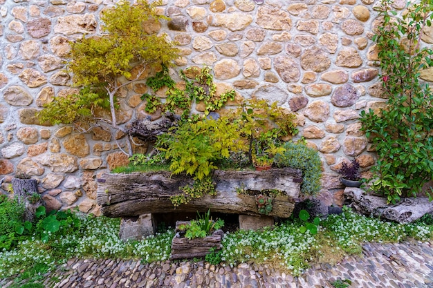 Covarrubias, 스페인에서 중세 석조 집의 외관에 식물과 꽃. 유럽