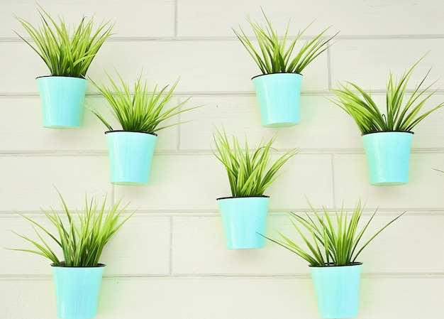 Plants in blue pots - wall decoration. the concept of repair, design, pattern.