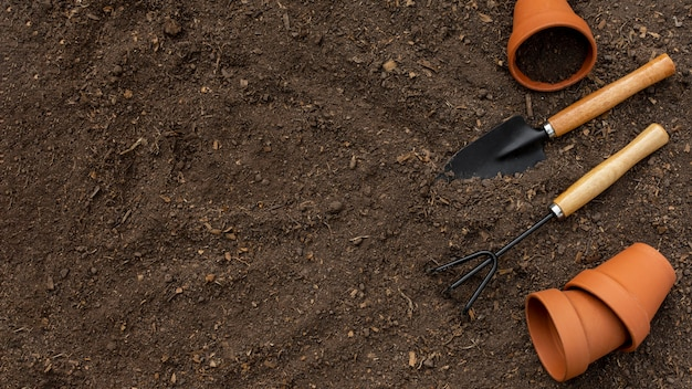 Plants gardening tools close up Free Photo