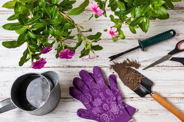 植物園芸ツールをクローズアップ
