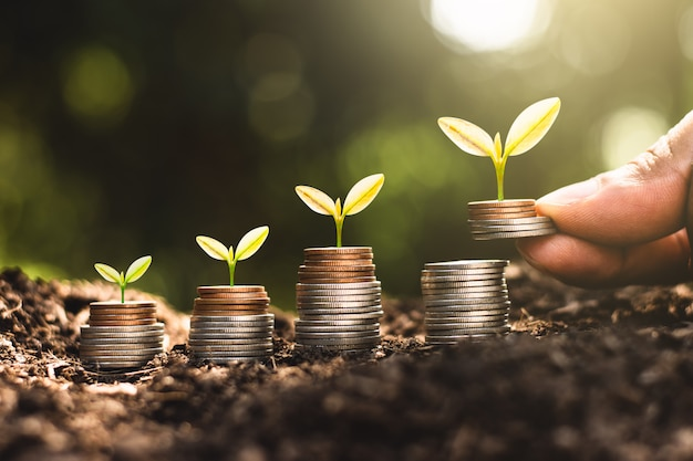 Растения, растущие на кучах монет с рук