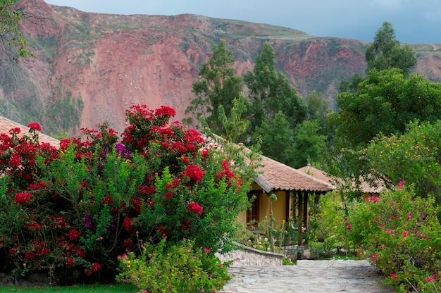 Растения в саду, вилка тика, священная долина, куско, перу