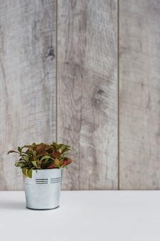 木製の壁の白い机の上のアルミニウムの植物