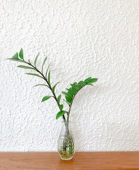 흰색 배경에 나무 테이블에 유리 꽃병에 식물