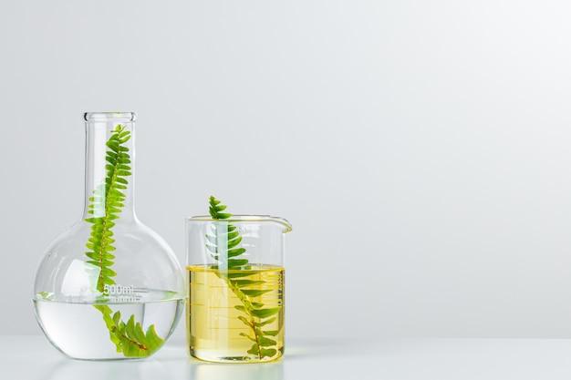 Растения в лабораторной посуде на белом фоне. концепция химических исследований продуктов и препаратов по уходу за кожей