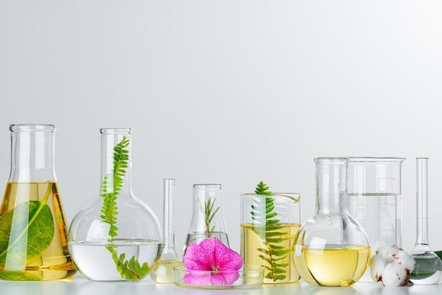 実験用ガラス器具の植物。スキンケア製品や医薬品の化学研究のコンセプト